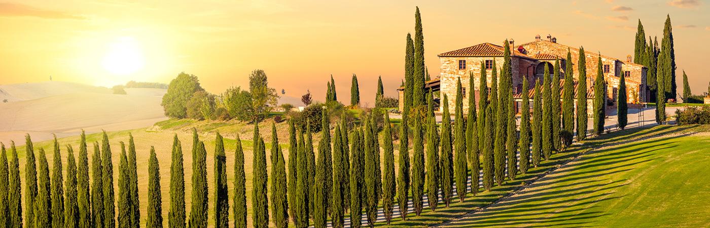 typische Landschaft in der Toskana